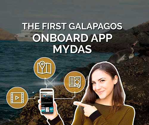 GALAGENTS - MYDAS APP, ONBOARD ENTERTAINMENT