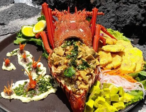 The delightful Galapagos lobster