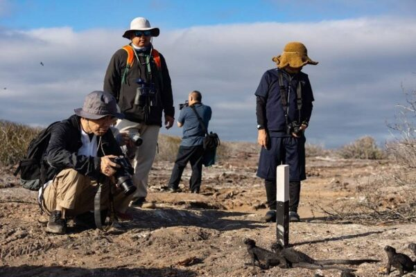 Educational tourism is the main experience in the Galapagos Islands.