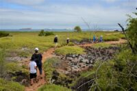 family and Cruises in Galapagos in the landscape