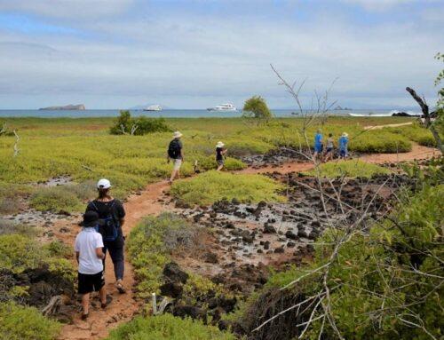 5 Razones para hacer un Crucero en Galápagos